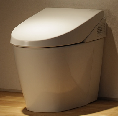 Neorest 550 Dual Flush Toilet, 1.6 GPF with SanaGloss (MS980CMG)
