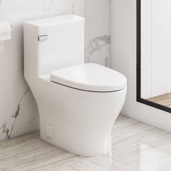 Icera C-6270.01 Cadence One-Piece Toilet Life