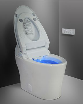 Icera CS-20.01 Muse iWash Integrated Bidet Toilet